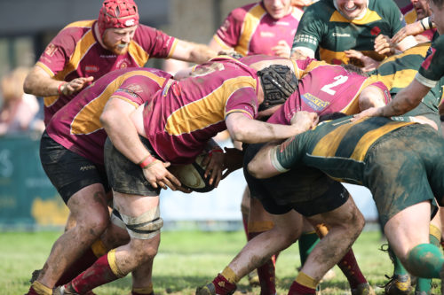 Tows 1st XV vs Barnes - by James Rudd