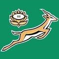 South Africa rugby logo